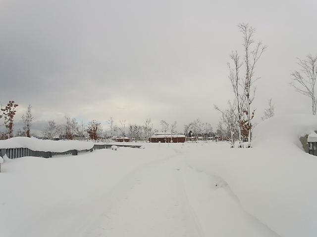 今年一番の寒気に見舞われた青森へ…