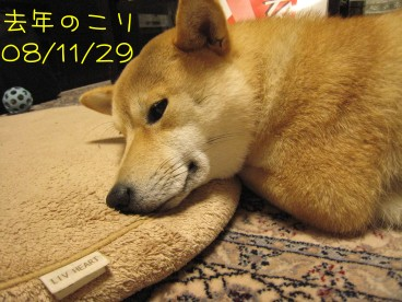 11.29 6