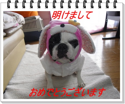 RIMG6715.jpg