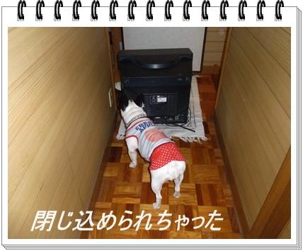 RIMG6843.jpg
