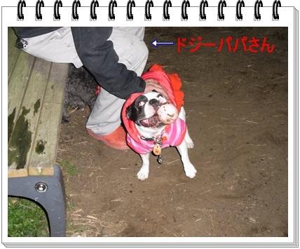 RIMG6963.jpg
