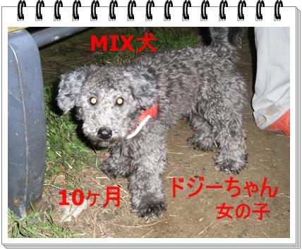 RIMG6969.jpg