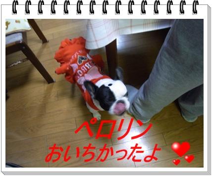 RIMG7117.jpg