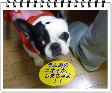 RIMG7122.jpg