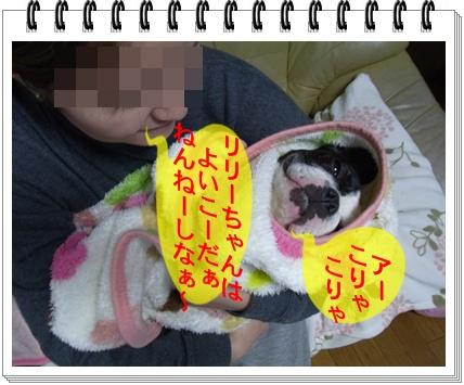 RIMG7263.jpg