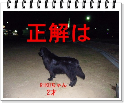 RIMG7657.jpg