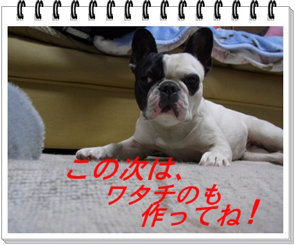 RIMG7680.jpg