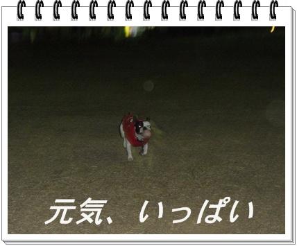 RIMG7792.jpg