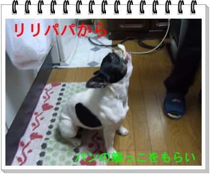 RIMG7978.jpg