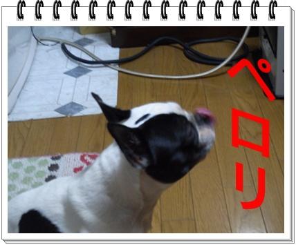 RIMG8034.jpg