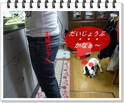 RIMG8248_20110215174110.jpg