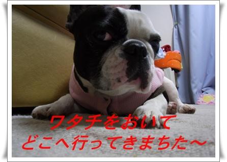 RIMG8441.jpg