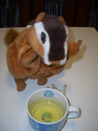 10.お茶と豆リス