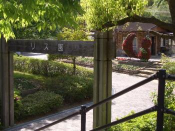 4.リス園入り口