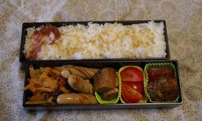 お弁当20100415