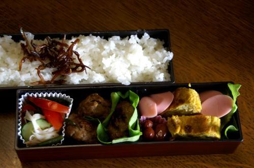 お弁当20100608