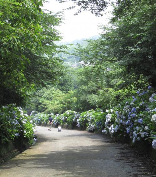 20100627粟井神社2