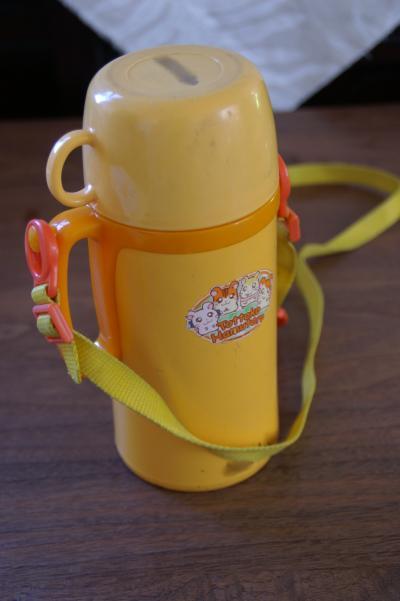20101006水筒