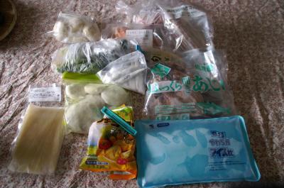 20101018冷凍庫1