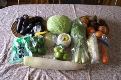 20101018野菜