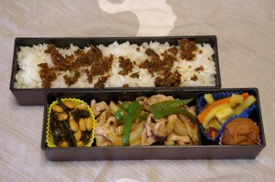 20101019お弁当