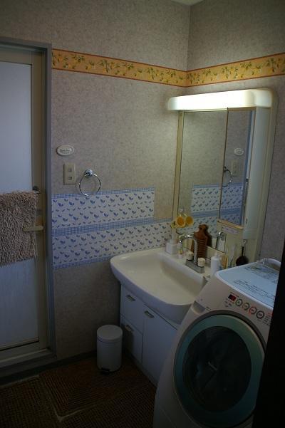 20101218洗面所1