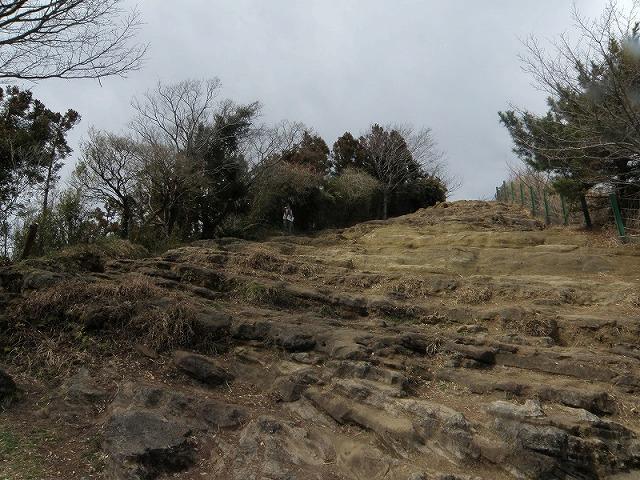 鎌倉アルプス「天園ハイキングコース」 2012/03/12
