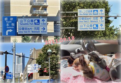 yokohama-1_20111004001229.jpg