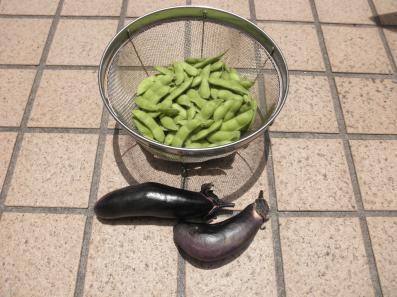 枝豆&ナス0715