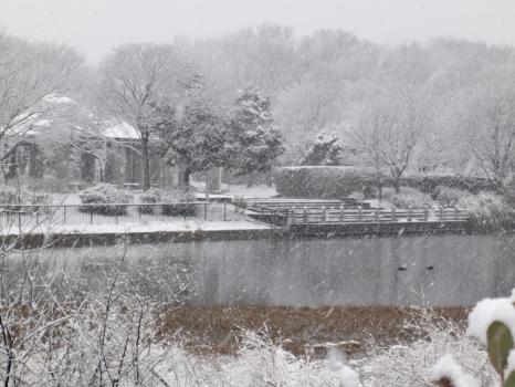 雪景色9110211