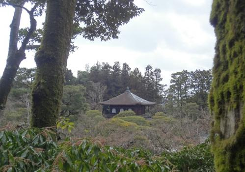 銀閣寺3110215
