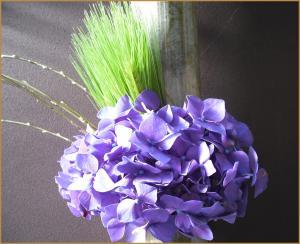 ajisai1_convert_20100124233158.jpg