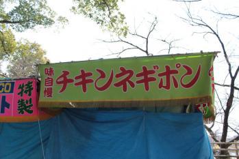 桜13<br />