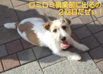 20101211003.jpg
