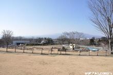 2010011905.jpg