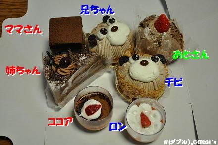 2010020709.jpg