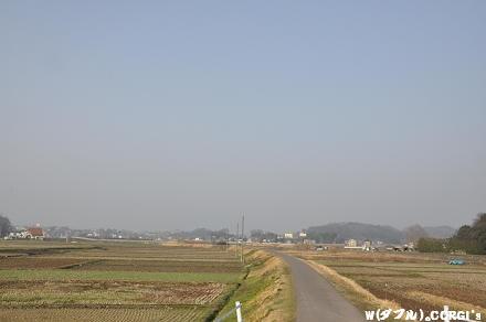 2010032001.jpg