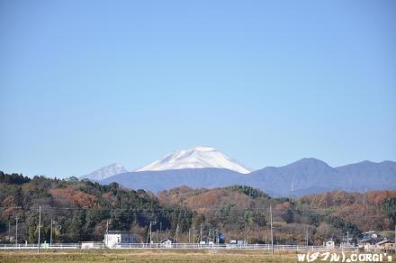 2010120503.jpg
