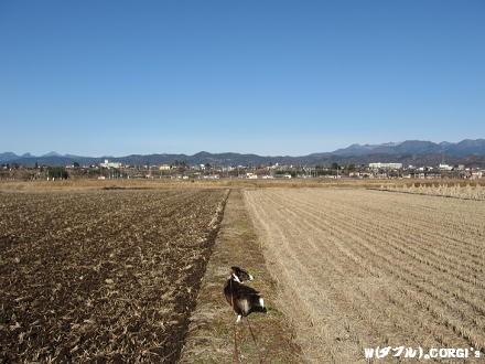 2010122806.jpg