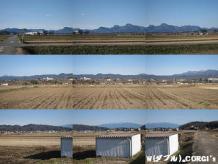2010122910.jpg