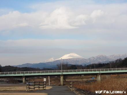 2010123120.jpg