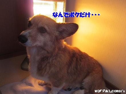 2011010312.jpg