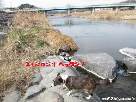 2011012910.jpg
