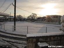 2011021905.jpg