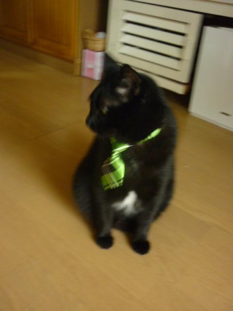 緑のネクタイ