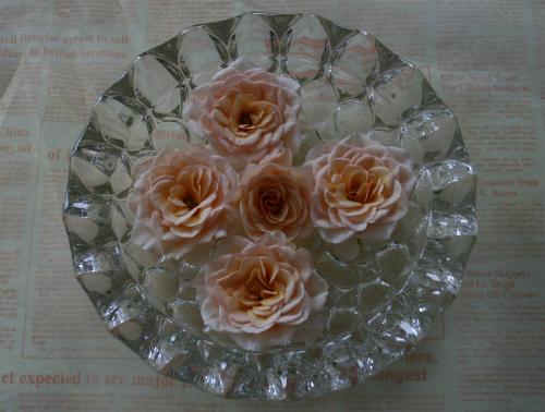 杏ローズの水鉢