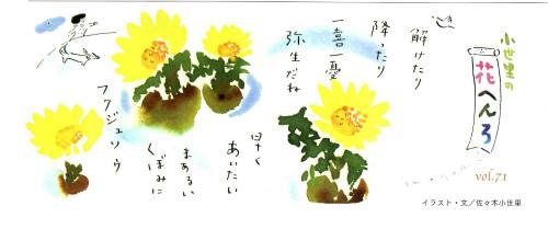 小世里さんの花へんろ