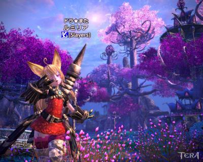 TERA_ScreenShot_20111026_152958.jpg
