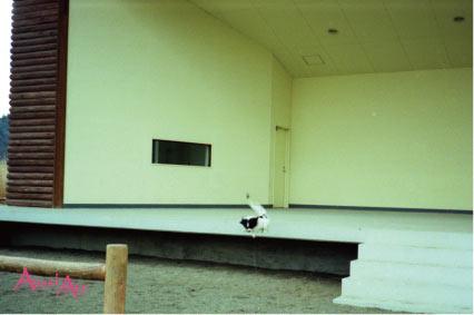 19960421-5.jpg