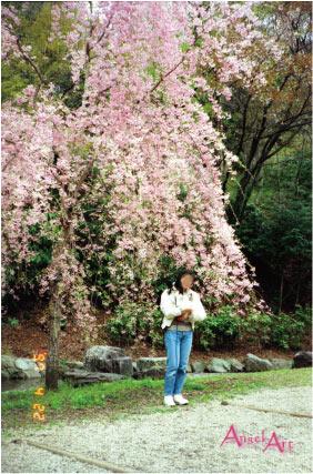 19960421-6.jpg